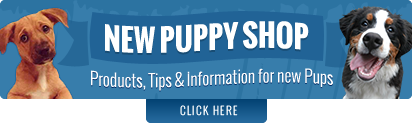 Take your dog to Pets&Vets Dog School